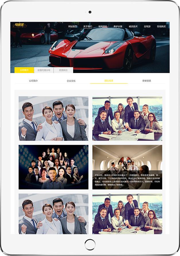 北京网站设计-马速宝润滑油